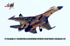 Опытный образец китайского истребителя J-11D (c) sina.com.cn