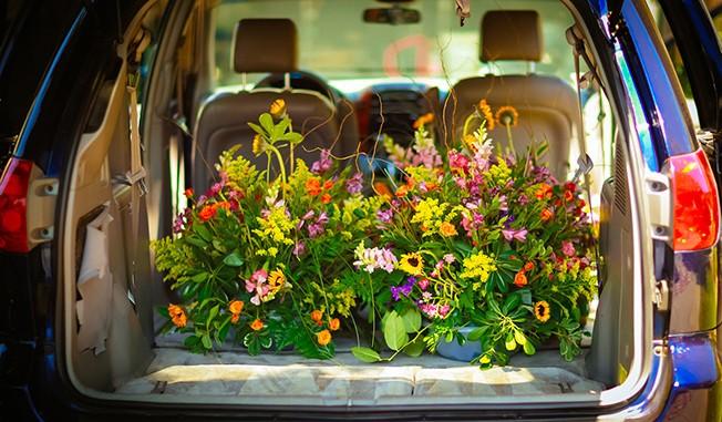 Как убрать неприятный запах в авто