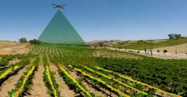 С приходом дронов в сельское хозяйство ожидается неминуемый рост отрасли