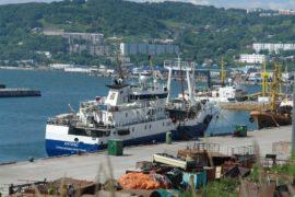 Первое судно с рыбой отправится с Камчатки напрямую в Европу