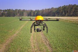В Сибири за созреванием пшеницы будут следить дроны-агрономы